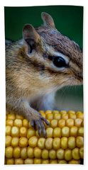 Chipmunk Goes Wild For Corn Beach Sheet