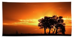 Beach Towel featuring the photograph Chobe River Sunset by Betty-Anne McDonald