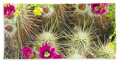 Cholla Cactus Blooms Beach Sheet