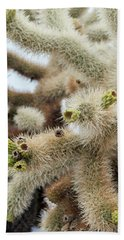 Cholla Cactus Garden Closeup Beach Towel