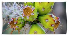 Beach Towel featuring the photograph Cholla Fruit S48 by Mark Myhaver