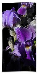 Beach Sheet featuring the photograph Chris' Garden - Purple Iris 1 by Stuart Turnbull