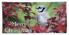 Christmas And Blue Jay Beach Towel by Trina Ansel