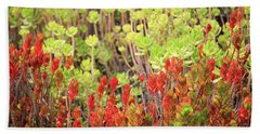 Beach Towel featuring the photograph Christmas Cactii by David Chandler
