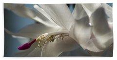 Christmas Cactus Blossom Beach Towel