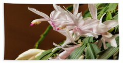 Christmas Cactus Beach Sheet