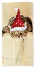 Christmas Splat Cat Beach Towel