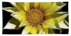 Beach Towel featuring the photograph Chrysanthos by Linda Lees
