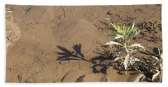 Beach Sheet featuring the photograph Circle Shadow Plant by Marie Neder