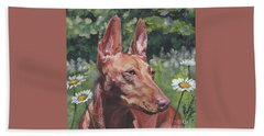 Cirneco Dell'etna Beach Towel by Lee Ann Shepard