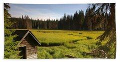 Clackamas Meadow Pump House- 2 Beach Sheet