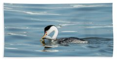Beach Towel featuring the photograph Clarks Grebe by Everet Regal