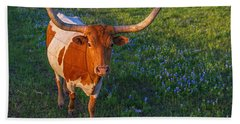 Classic Spring Scene In Texas Beach Towel by Gary Holmes