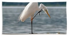 Cleaning White Egret Beach Towel