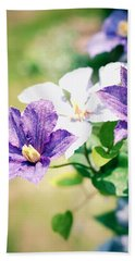 Clematis Beach Towel by Rachel Mirror