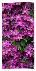 Clematis Remembrance Flowers Beach Towel
