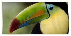 Close-up Of Keel-billed Toucan Beach Towel