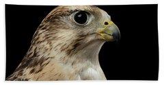 Close-up Saker Falcon, Falco Cherrug, Isolated On Black Background Beach Towel by Sergey Taran