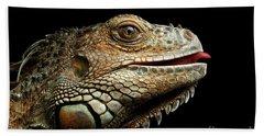 Close-upgreen Iguana Isolated On Black Background Beach Sheet by Sergey Taran
