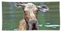 Close Wet Moose Beach Towel