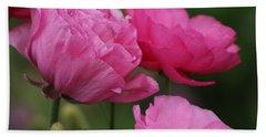 Closeup Deep Peony Pink Ranunculus Beach Towel