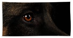 Closeup Eyes Of German Shepherd On Black Beach Towel by Sergey Taran