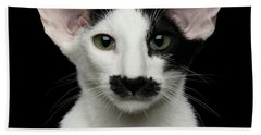 Closeup Funny Oriental Shorthair Looking At Camera Isolated, Bla Beach Towel