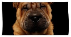 Closeup Funny Sharpei Puppy Isolated On Black Beach Towel by Sergey Taran