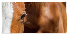 Closeup Horse Eye With Copy Space Beach Towel