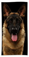Closeup Portrait Of German Shepherd On Black  Beach Towel by Sergey Taran