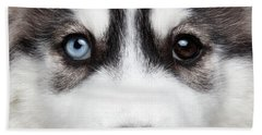 Closeup Siberian Husky Puppy Different Eyes Beach Towel