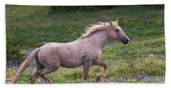 Cloud- Wild Stallion Of The West Beach Sheet