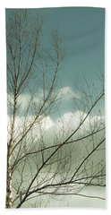 Beach Towel featuring the photograph Cloudy Blue Sky Through Tree Top No 1 by Ben and Raisa Gertsberg