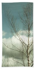 Beach Towel featuring the photograph Cloudy Blue Sky Through Tree Top No 2 by Ben and Raisa Gertsberg