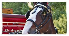 Clydesdale At Esp Beach Towel by Alice Gipson
