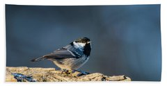 Beach Towel featuring the photograph Coal Tit's Colors by Torbjorn Swenelius