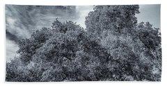 Coast Live Oak Monochrome Beach Towel