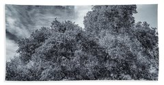 Coast Live Oak Monochrome Beach Towel