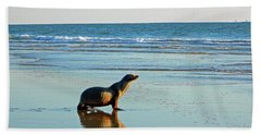 Beach Towel featuring the photograph Coastal Friends by Everette McMahan jr