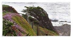 Coastal Windblown Trees Beach Towel