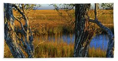 Beach Towel featuring the photograph Coastal Winter Scene by Laura Ragland