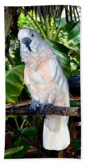 Cockatoo On Perch Beach Towel