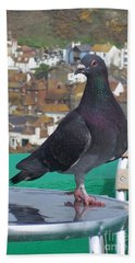 Beach Sheet featuring the photograph Coffee Shop Pigeon by Jolanta Anna Karolska