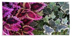 Beach Sheet featuring the mixed media Coleus And Ivy- Photo By Linda Woods by Linda Woods