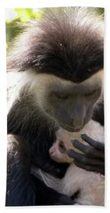 Colobus Monkey And Child Beach Towel