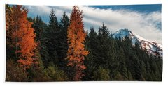 Beach Towel featuring the photograph Color At Mt. Hood by Hans Franchesco