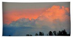 Beach Towel featuring the photograph Color Burst by AJ Schibig