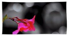 Color By Fuchsia Beach Towel