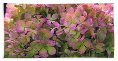 Beach Towel featuring the photograph Color-changing Little Lime Hydrangea by Rona Black