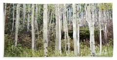 Beach Sheet featuring the photograph Colorado Aspen Tree Grove Forest Landscape by Andrea Hazel Ihlefeld